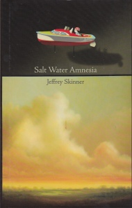 Skinner Salt Water Amnesia cover