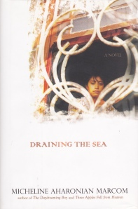 Marcom Draining the Sea