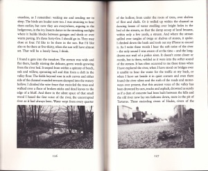 Silt Road Pages