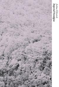imperial-nostalgias-joshua-edwards-paperback-cover-art