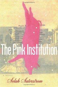saterstrom-pink-institution