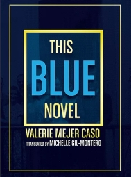 This image has an empty alt attribute; its file name is mejer-caso-blue-novel.webp
